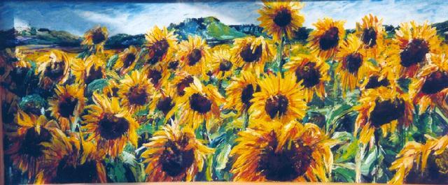 Zonnenbloemen in de Bourgogne 1 (verkocht)
