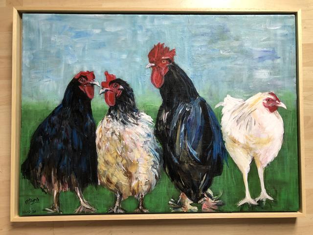 3 kippen en een haan (verkocht)