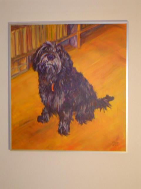 Hond Gerard Groen (verkocht)