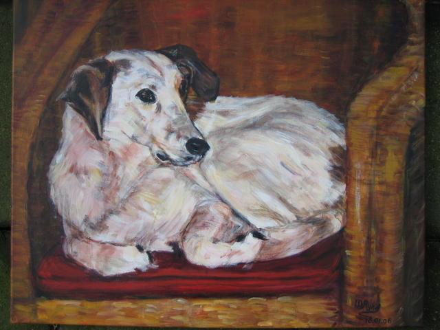 hond Sjoerd (verkocht)